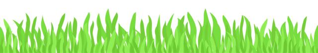 grass640